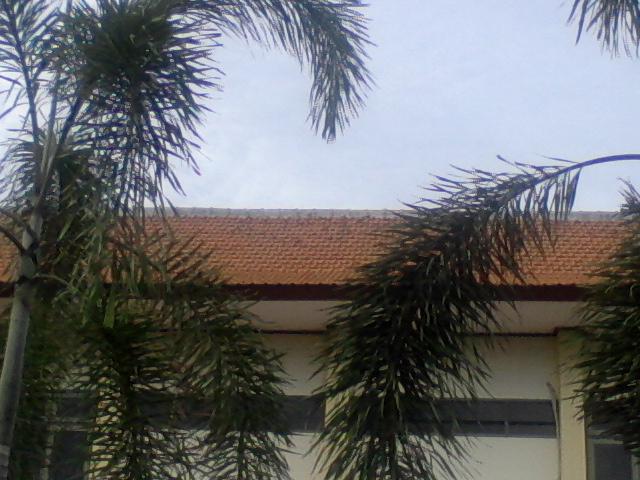 Atap Kantor BPN Gresik, menjadi hotel peristirahatan mereka