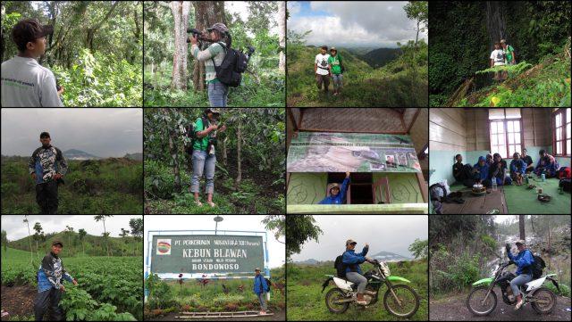 trip to Kayumas-Ijen